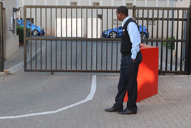 Does Your Business Need Professional Security?