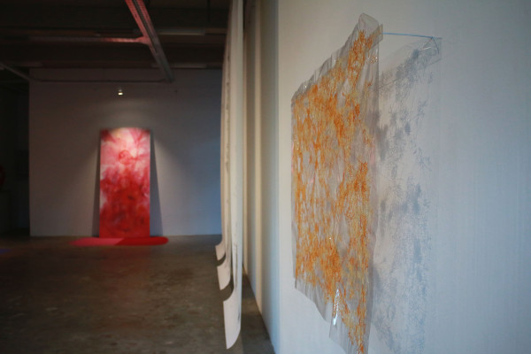 ENCOUNTERS WITH THE INEFFABLE: the exhibition presented canvas, powder pigments, cotton and thread, transparent plastic and pencil on paper, articulating them to foreground a spatially experiential dimension. Photo: Litaletu Zidepa