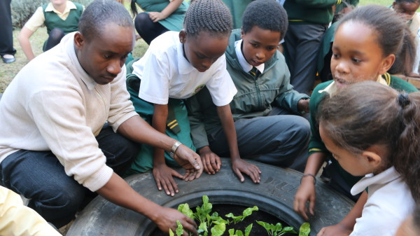 GENERATION EARTH: Felix Donkor shows the Mondeor Primary the ropes on sustainable gardening