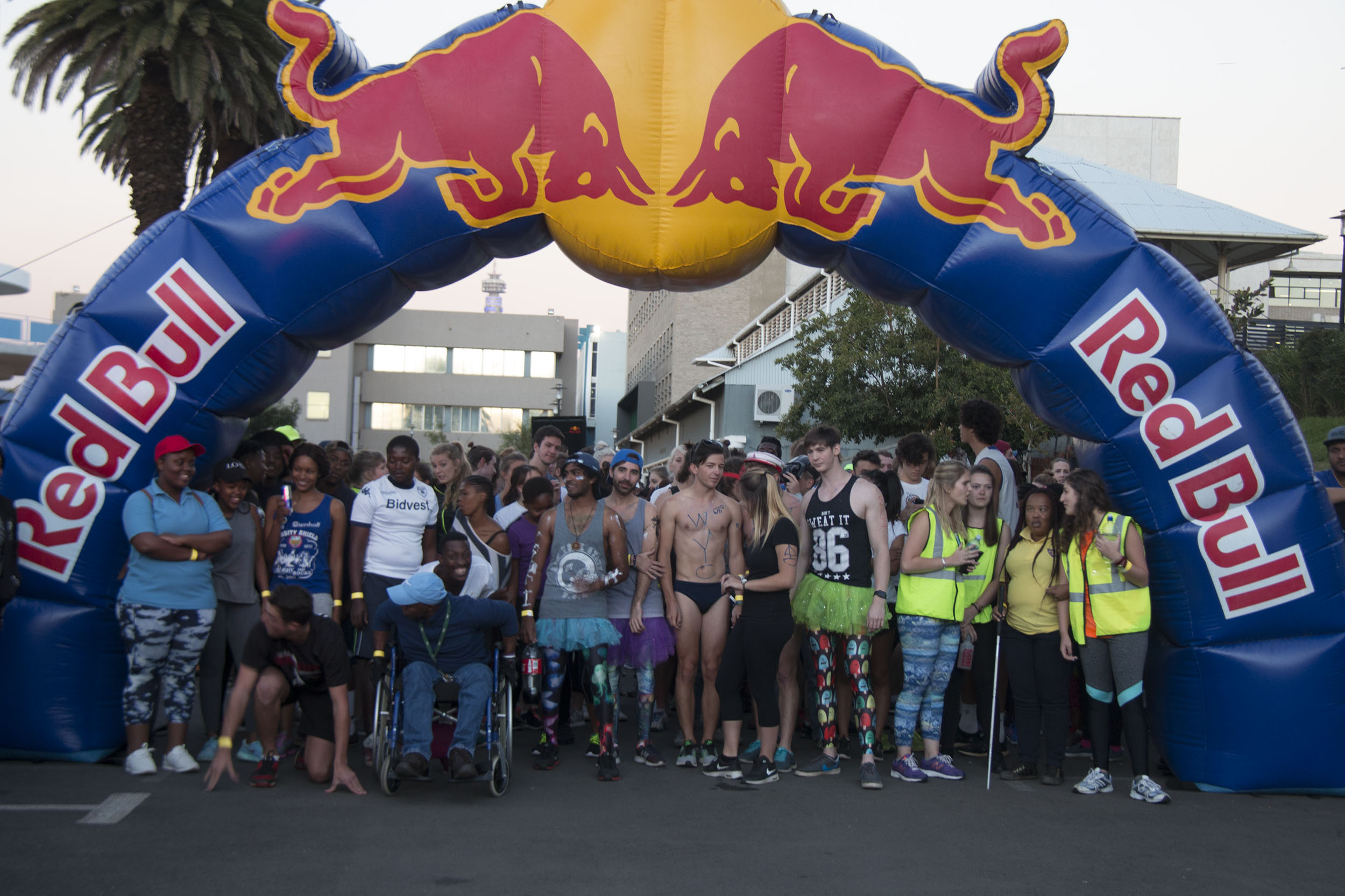 Wits Wings for Life demo run a success.