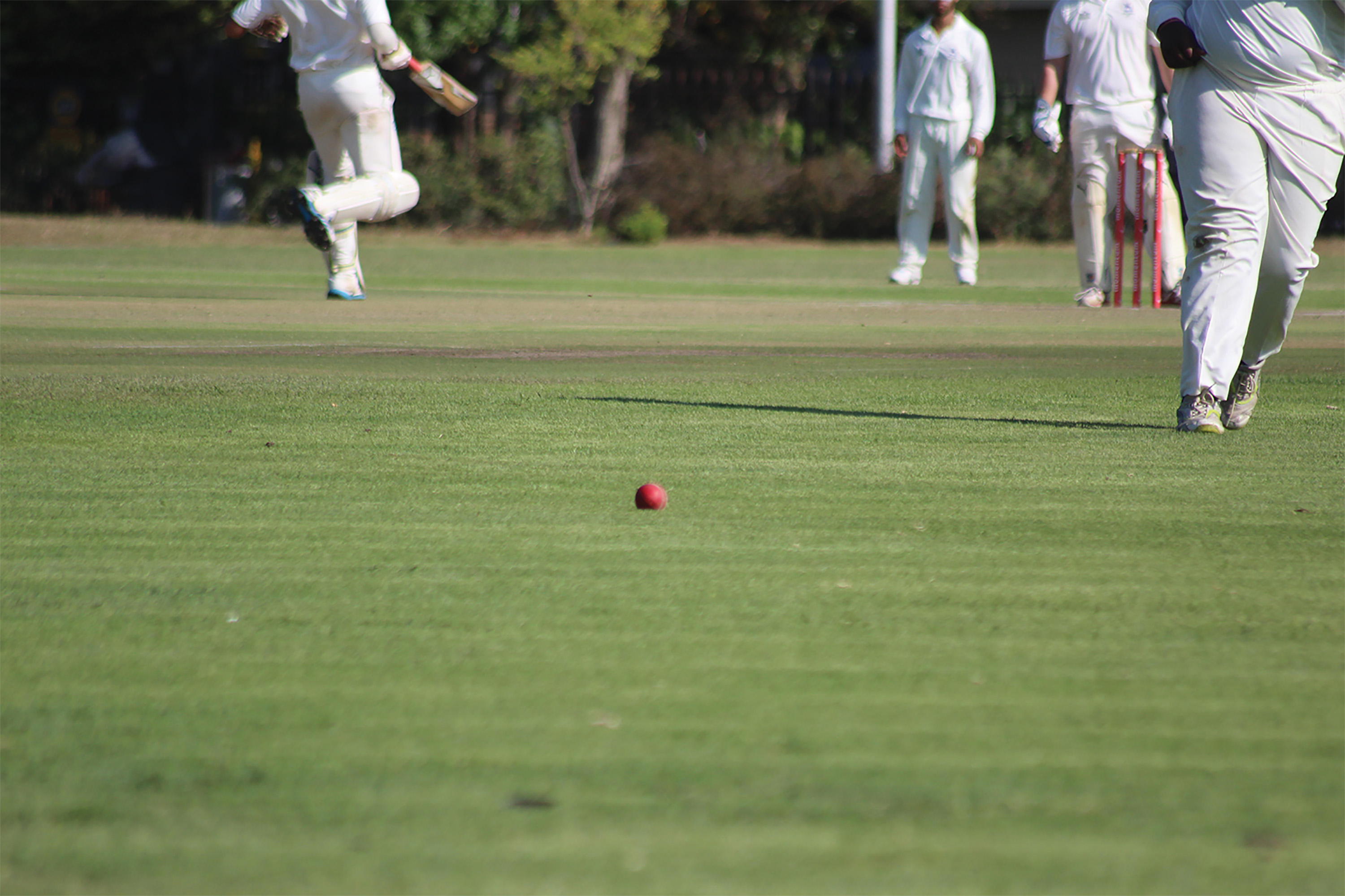 Witsies play in the USSA Cricket tournament