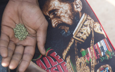 High time for dagga ruling