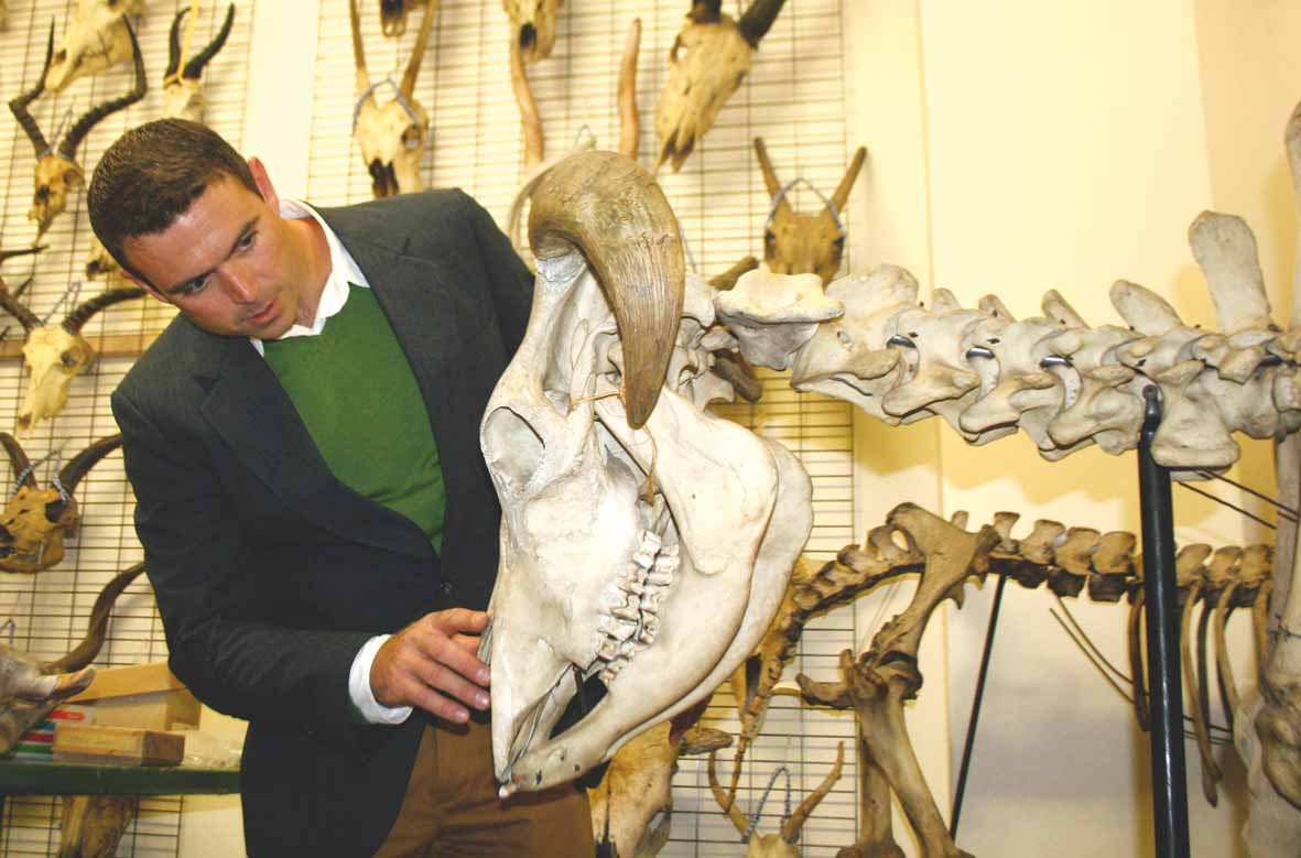 Dr Jonah Choiniere shows Wits Vuvuzela a piece from the Wits palaeoscience department collection  at Wits.